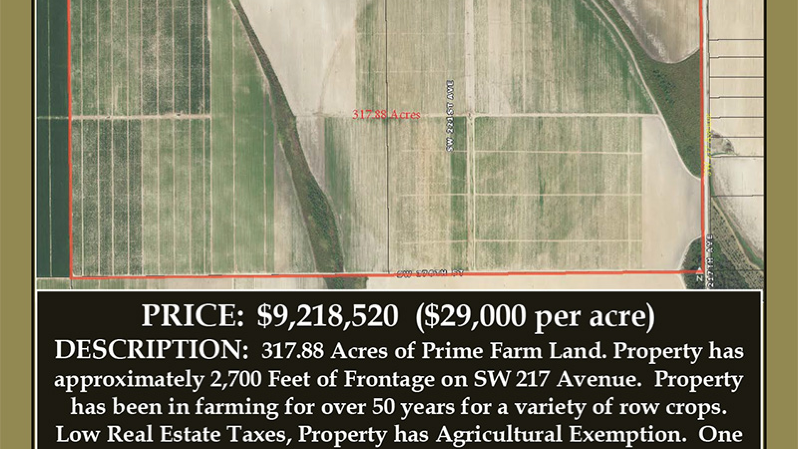 Brochure-for-317-Acres